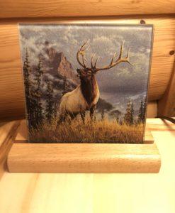 Bull Elk Trivet