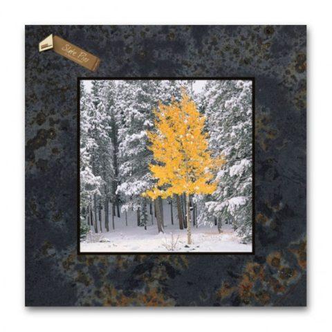 12x12 Slate Pic E99SP-Lone Aspen_RMNP_CO