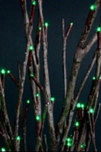 Green Willow Branch Lights