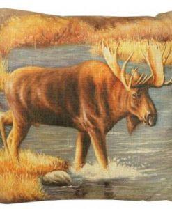 Moose Water Crossing w130023