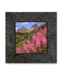 R94C-Fireweed, Yankee Boy Basin, Colorado