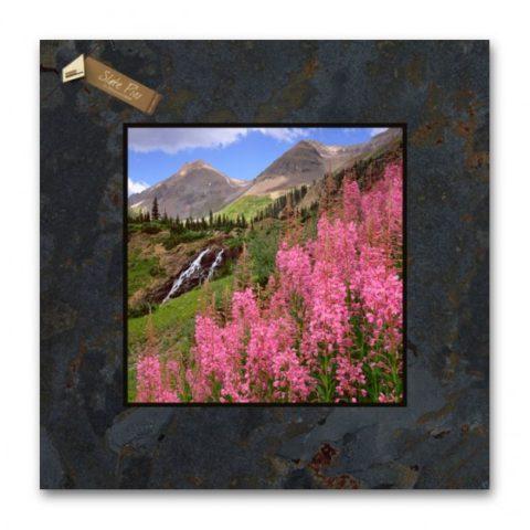12x12 Slate Pic R94SP-Fireweed_Yankee Boy Basin_CO