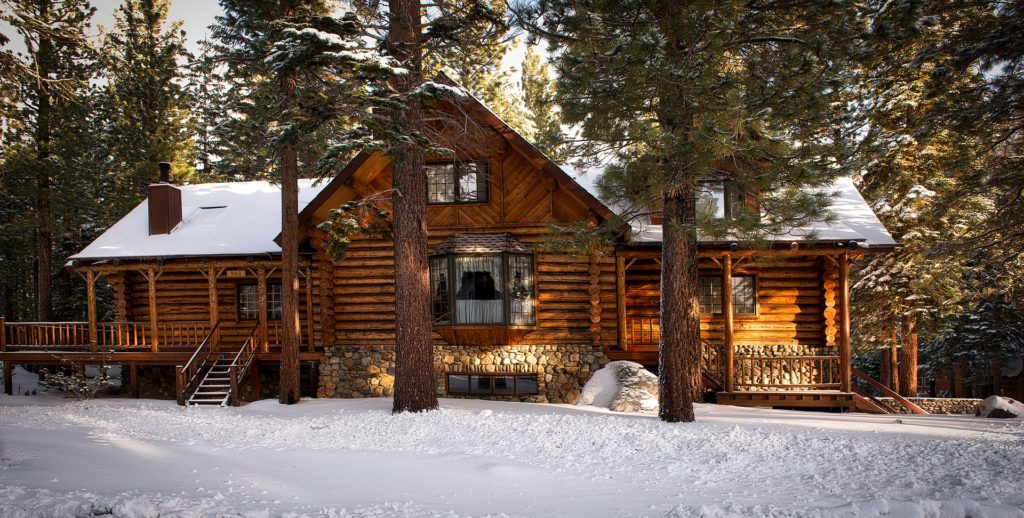 The Bear's Den Loveland has largest collection of cabin decor, furniture, and more!
